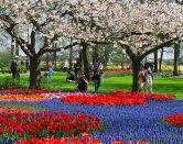 La mayor exposición de flores del mundo