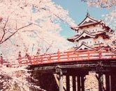 Consejos para aprender japonés: desde el principio y más allá