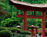 Consejos para aprender japonés desde el principio