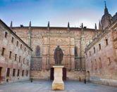 La ranita más huidiza de Salamanca