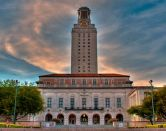 University of Texas, orgullo bovino