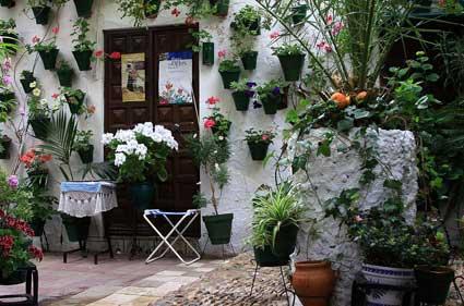 El patio de mi casa ya no es particular infoidiomas for Ver patios decorados