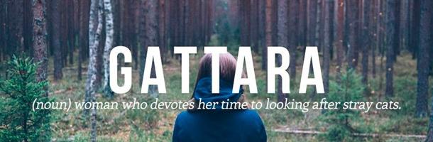 Gattara es de esas palabras más bonitas del italiano que debían estar
