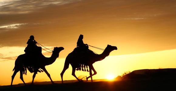 El árabe, al igual que Arabia, esconde muchos secretos y curiosidades...