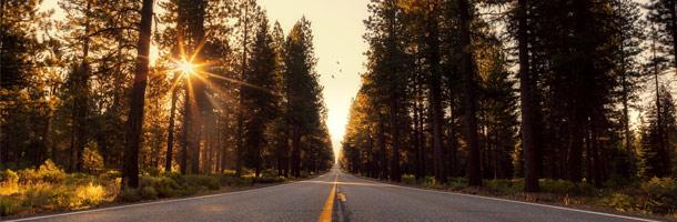 Todo lo que necesitas saber sobre estas becas en California en este artículo