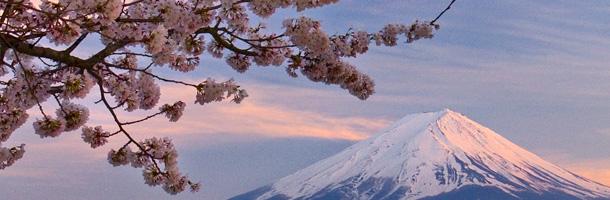 El gobierno japonés convoca nuevas becas de formación especializada