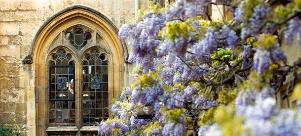 Estas becas en la Universidad de Oxford cuentan con una buena ayuda económica