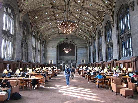 chicago_universidad
