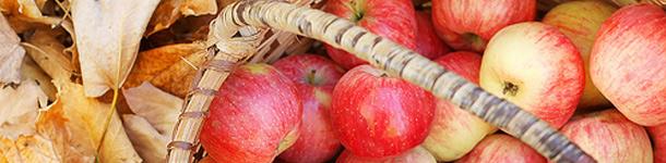 Una serie de dichos del inglés que hablan hasta de fruta