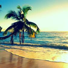Uno de los países más extraños donde aprender inglés es Hawái