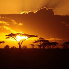 Dentro de los idiomas más raros del mundo está esta lengua bantú