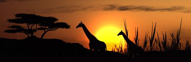 Entre los idiomas más raros del mundo hay muchos de origen africano