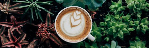 Veamos cómo pedir un café en 32 idiomas distintos